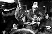 Rice Harvest, Sagada, Northern Philippines,1996.