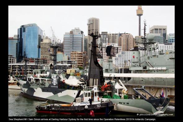 01_Sam Simon arrives at Darling Harbour Sydney 2014_© Glenn Lockitch