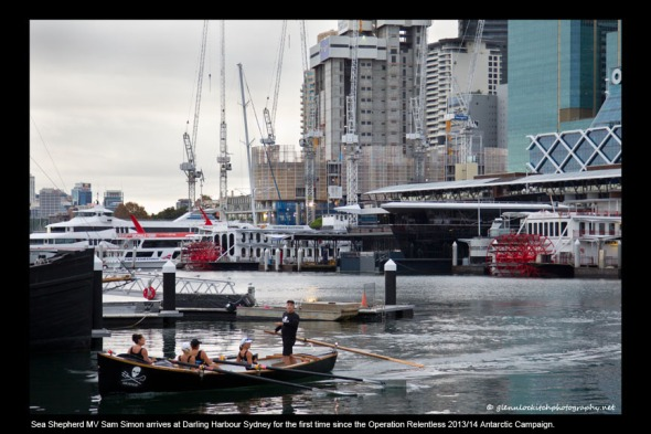 14_Sam Simon arrives at Darling Harbour Sydney 2014_© Glenn Lockitch